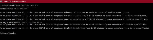 Ejemplo de ejecución comando ipconfig showclassid