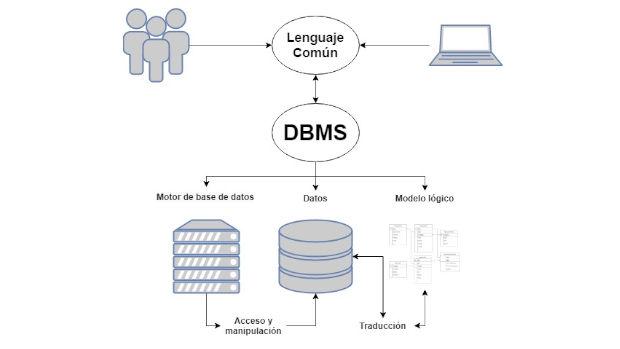 Funcionamiento de los manejadores de base de datos